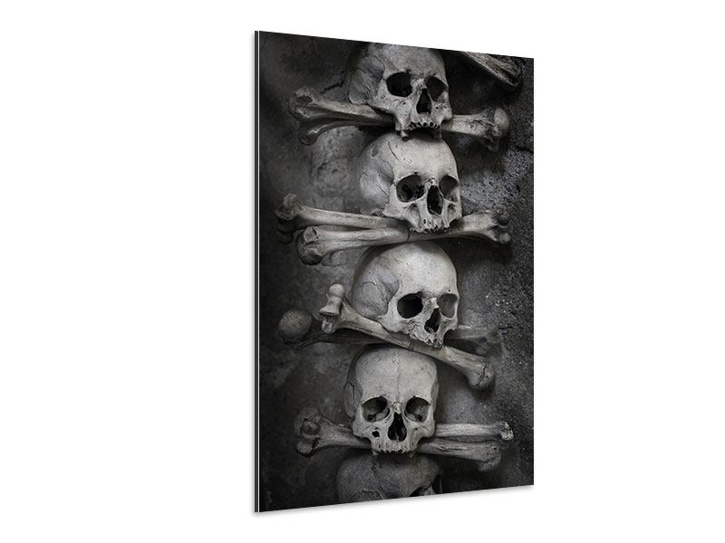 Aluminiumbild Totenköpfe