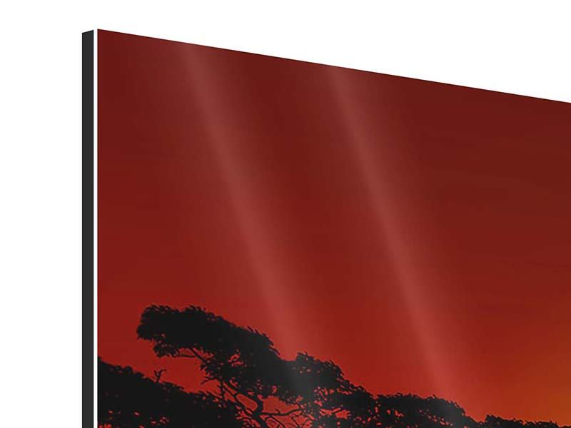 Aluminiumbild Afrikanische Steppenelefanten