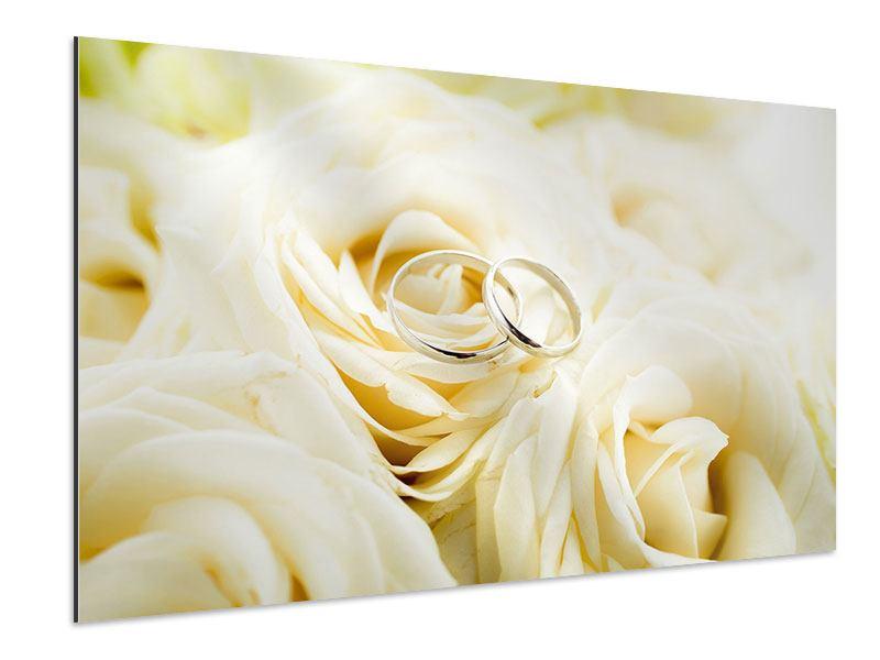 Aluminiumbild Trauringe auf Rosen gebettet