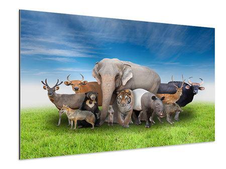 Aluminiumbild Warten auf die Arche Noah