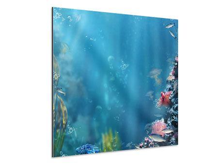 Aluminiumbild Unter Wasser