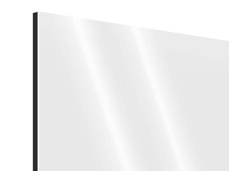 Aluminiumbild Spitz