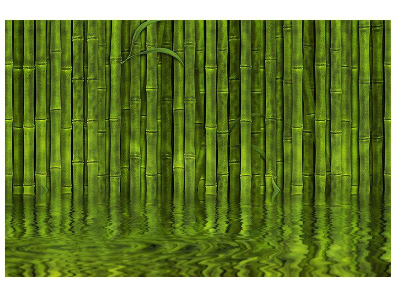 Aluminiumbild Wasserspiegelung Bambus