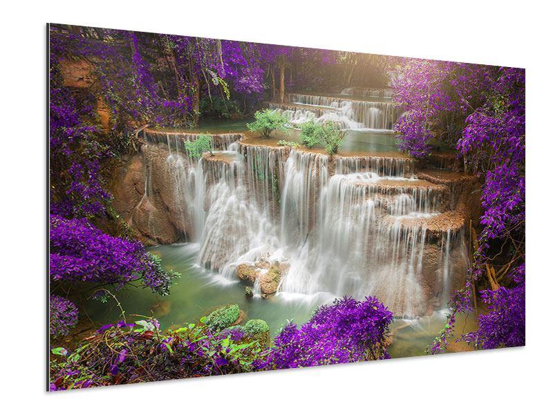 Aluminiumbild Garten Eden