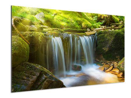 Aluminiumbild Schönheit des fallenden Wassers