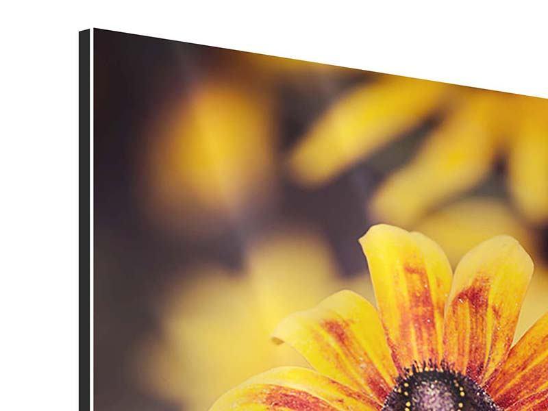 Aluminiumbild Fröhliche Blumen
