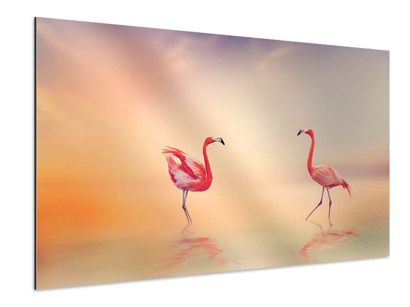 Aluminiumbild Romantische Flamingos