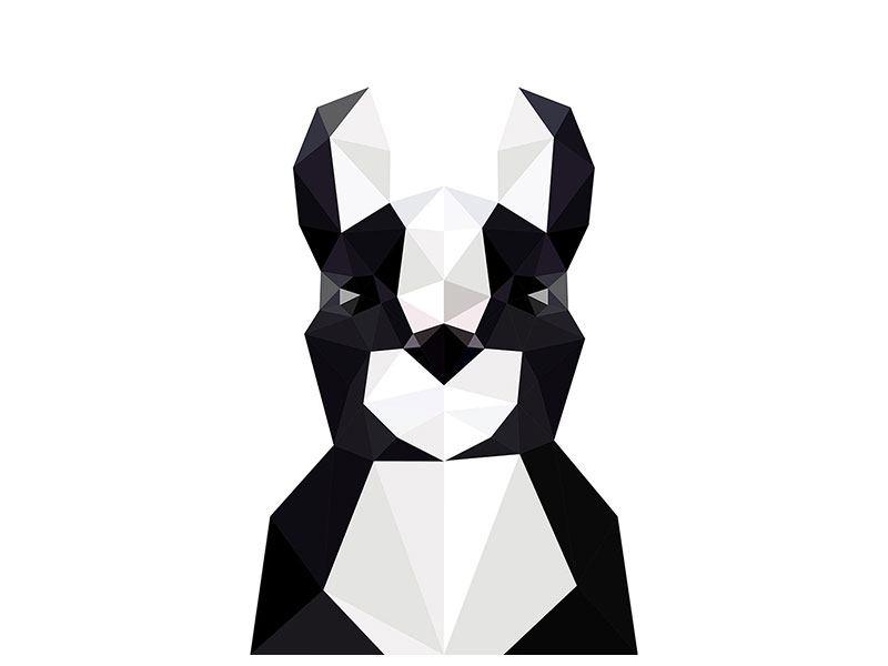 Aluminiumbild Origami Bulldogge