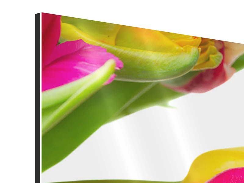 Aluminiumbild Ein bunter Tulpenstrauss