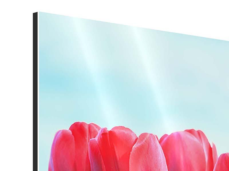 Aluminiumbild Rote Tulpen