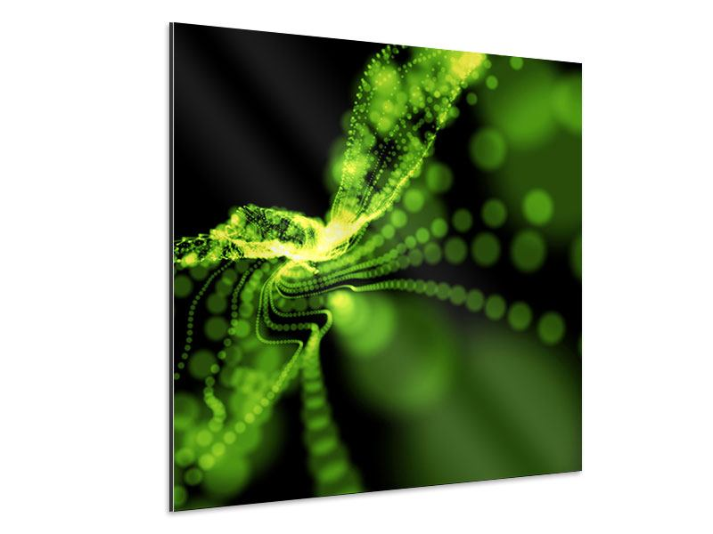 Aluminiumbild Grünes Lichterspiel