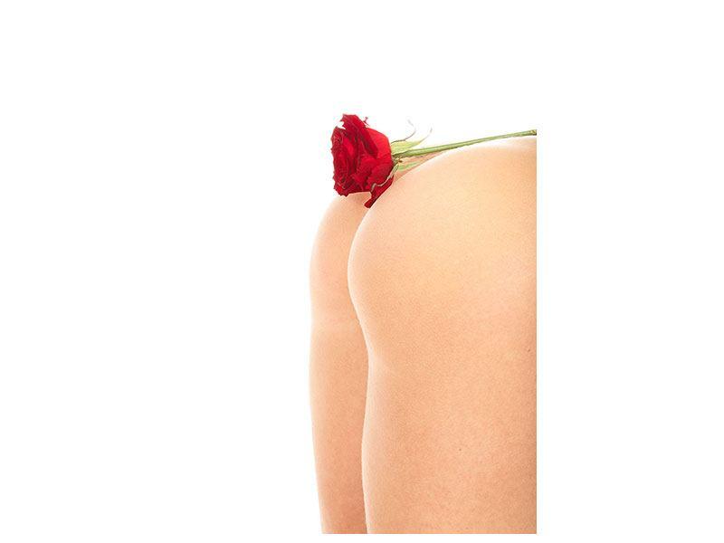 Aluminiumbild Verführerische Rose