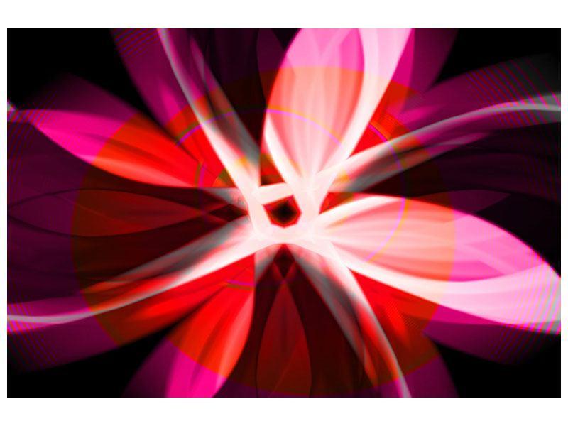 Aluminiumbild Abstrakt Flower Power