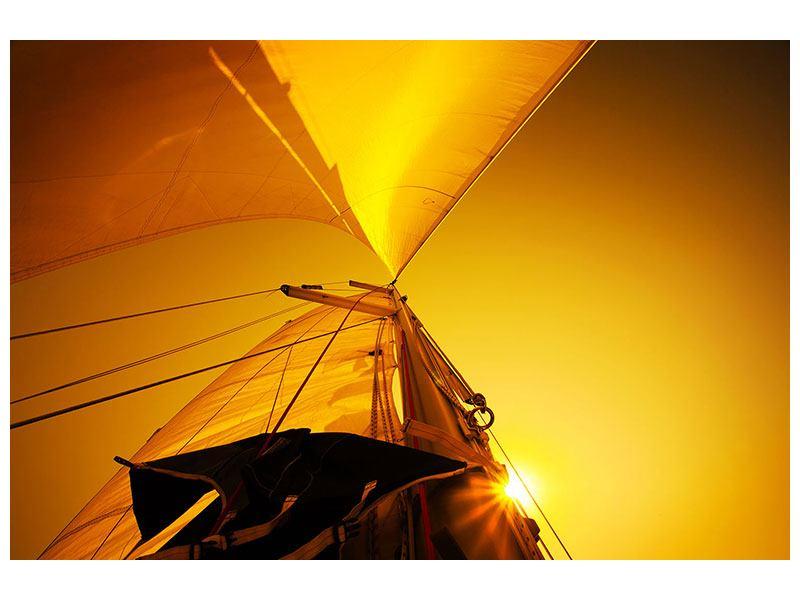Aluminiumbild Segelboot im Sonnenuntergang