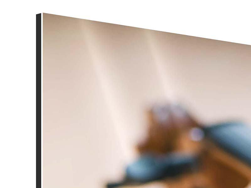 Aluminiumbild Geige