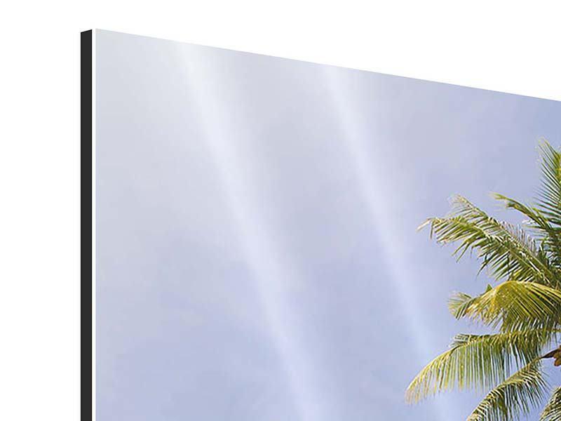 Aluminiumbild Dschungelbeat