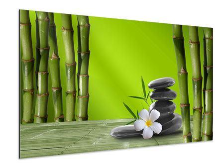 Aluminiumbild Der Bambus