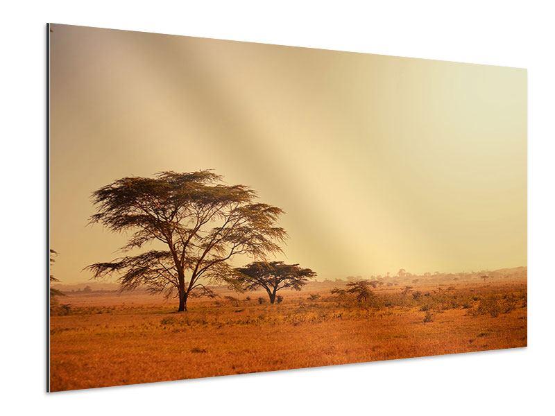 Aluminiumbild Weideland in Kenia