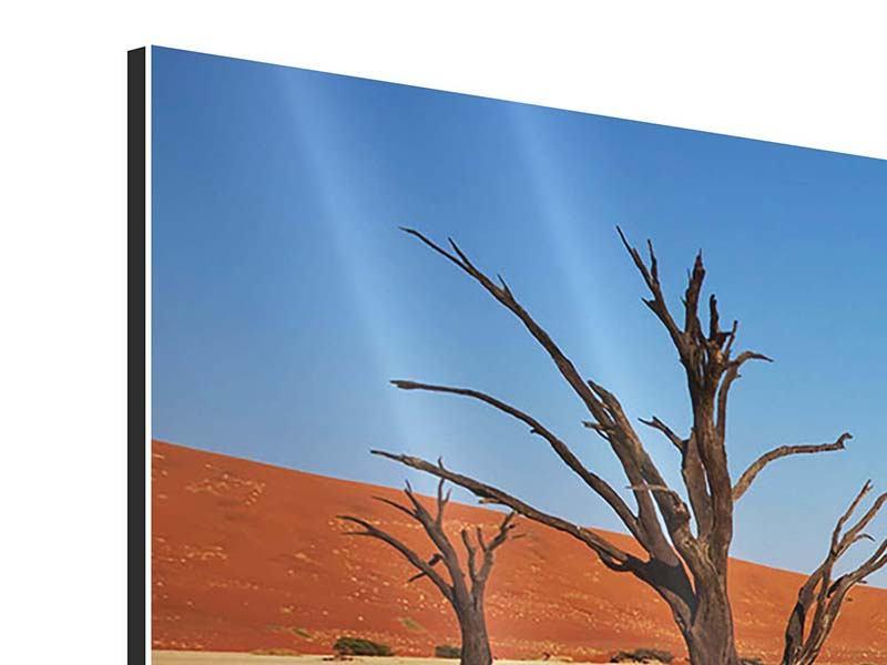 Aluminiumbild Wüste