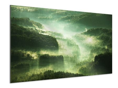 Aluminiumbild Über den Wäldern