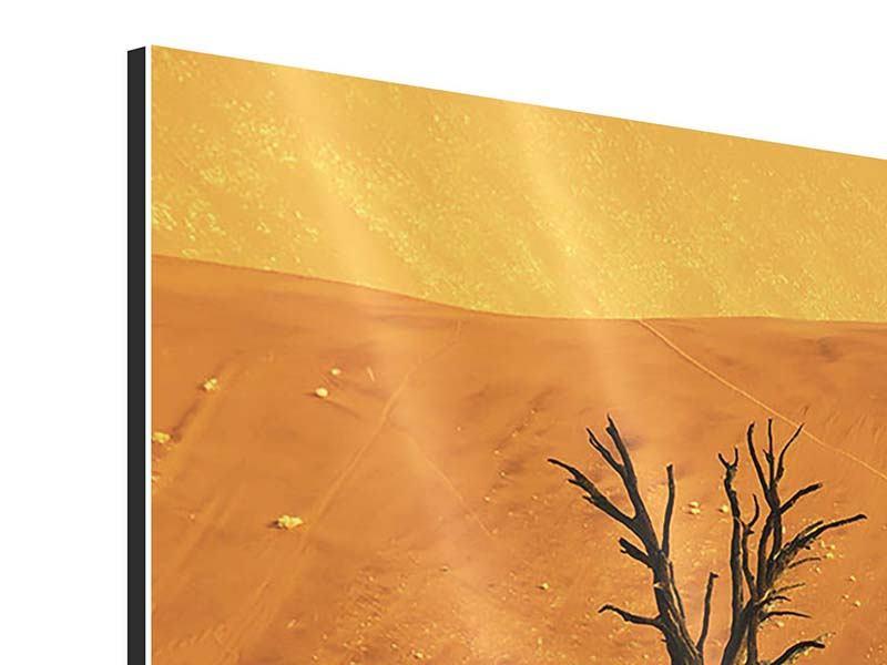 Aluminiumbild Der Wüstenbaum