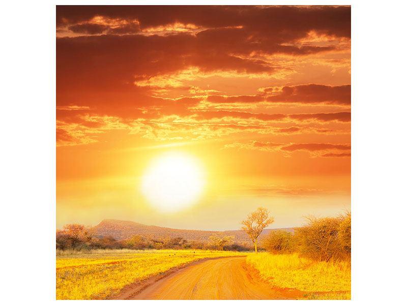 Aluminiumbild Sonnenuntergang in der Savanne