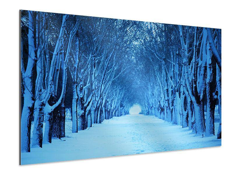 Aluminiumbild Winterbäume
