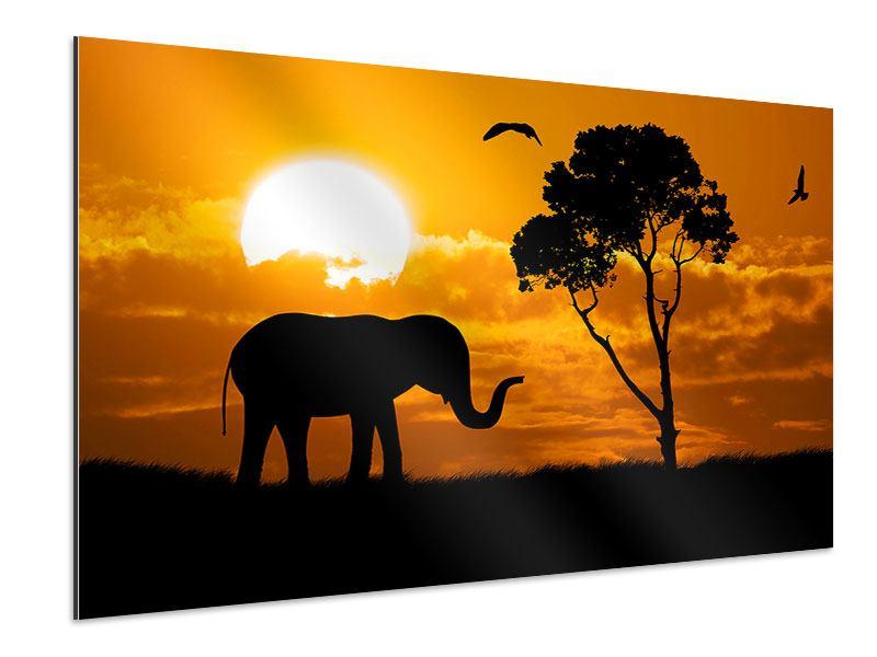 Aluminiumbild Verträumtes Afrika