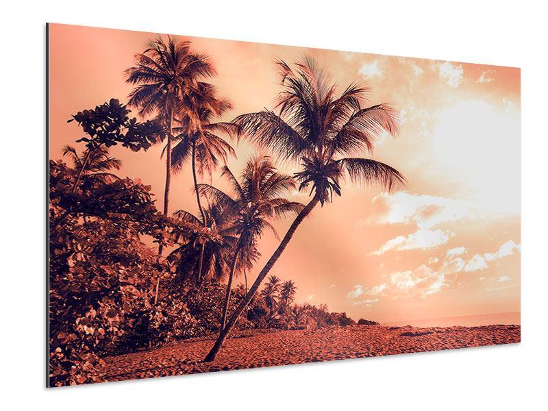 Aluminiumbild Tropenparadies