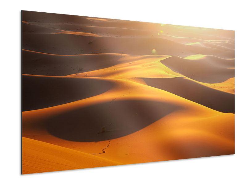Aluminiumbild Wüstenwanderung