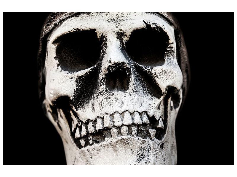 Aluminiumbild Skull