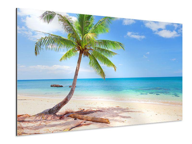 Aluminiumbild Die eigene Insel