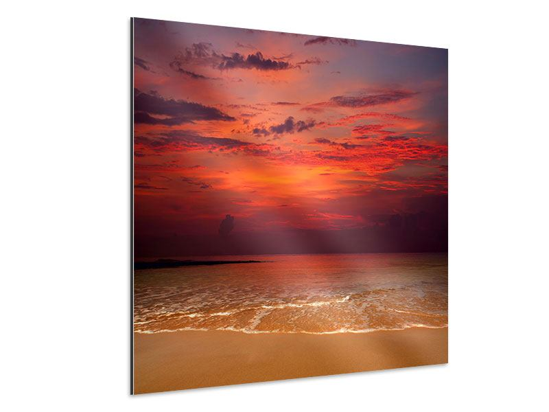 Aluminiumbild Zeile auf den Sand