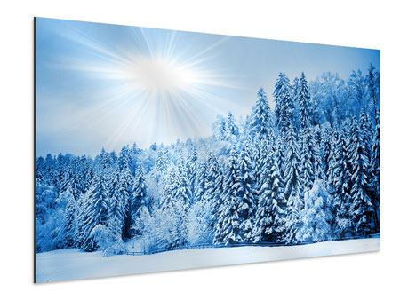 Aluminiumbild Wintermärchen