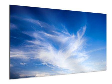 Aluminiumbild Schleierwolken