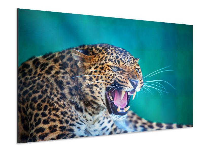 Aluminiumbild Achtung Leopard
