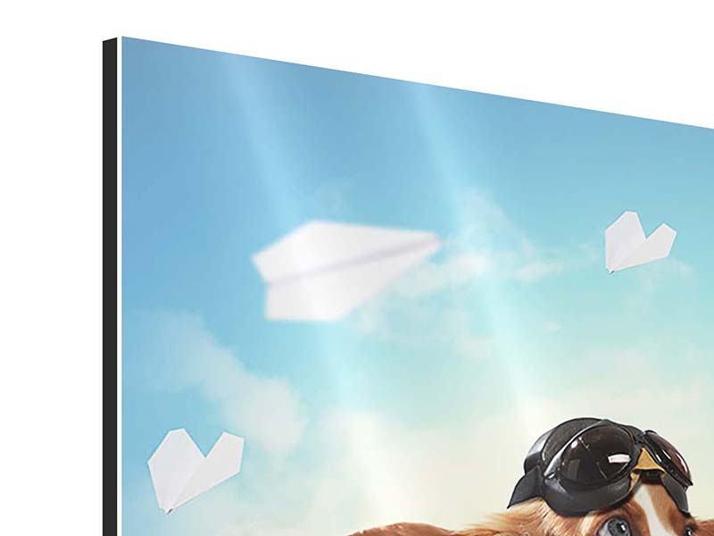 Aluminiumbild Flying Dog