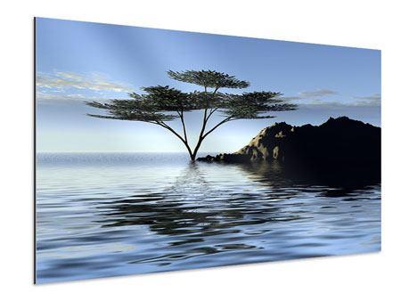 Aluminiumbild Naturfaszination