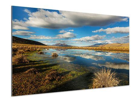 Aluminiumbild Wasserspiegelung am See