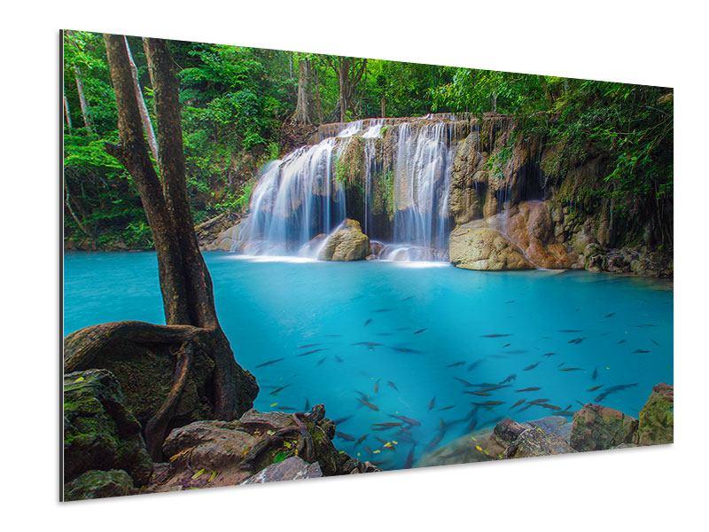 Aluminiumbild Naturerlebnis Wasserfall