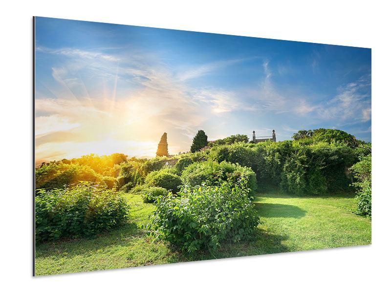 Aluminiumbild Sonnenaufgang im Park