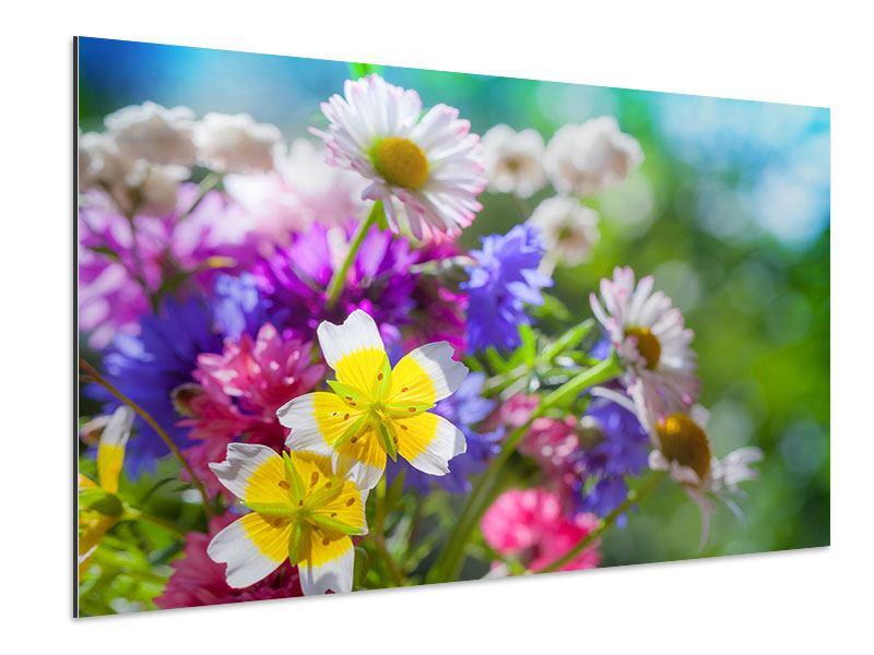 Aluminiumbild XXL Gartenblumen