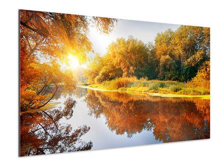 Aluminiumbild Waldspiegelung im Wasser
