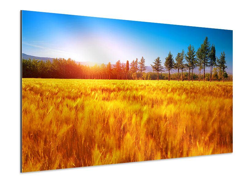 Aluminiumbild Der Herbst