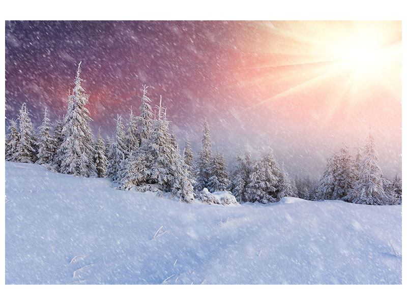 Aluminiumbild Mystischer Schneesturm