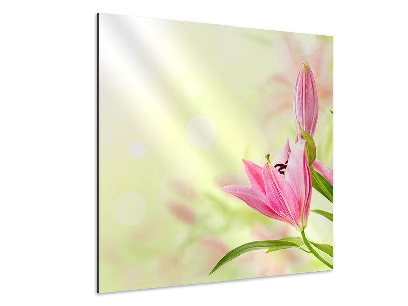 Aluminiumbild Lilien-Perspektive