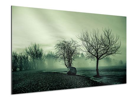 Aluminiumbild Der Auwald im Nebel