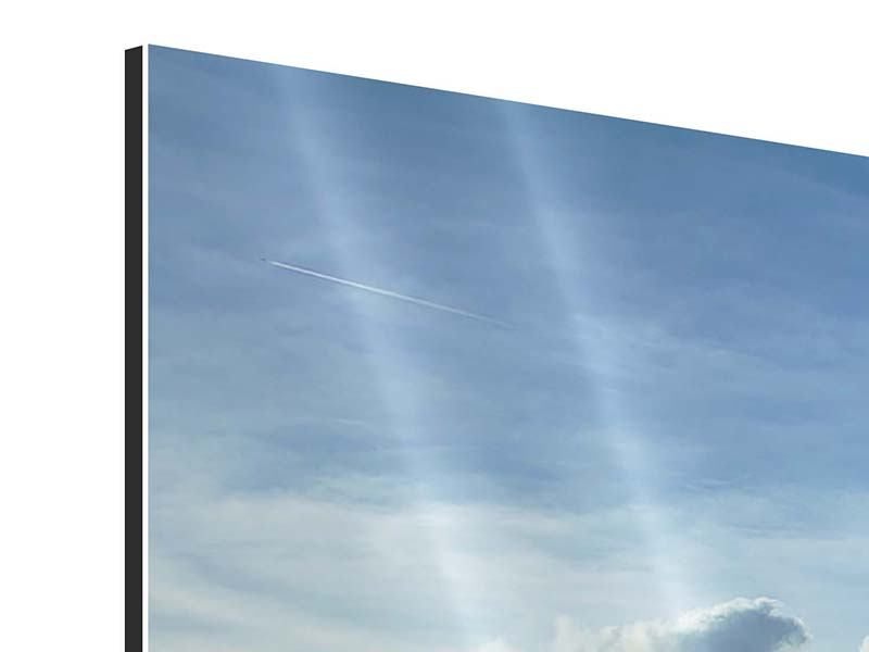 Aluminiumbild Frühlingsbaum