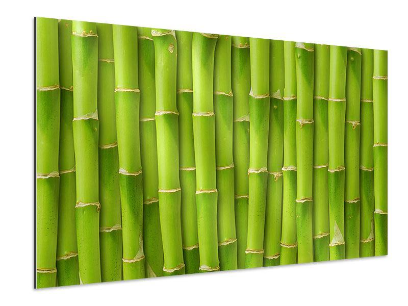 Aluminiumbild Bambuswand