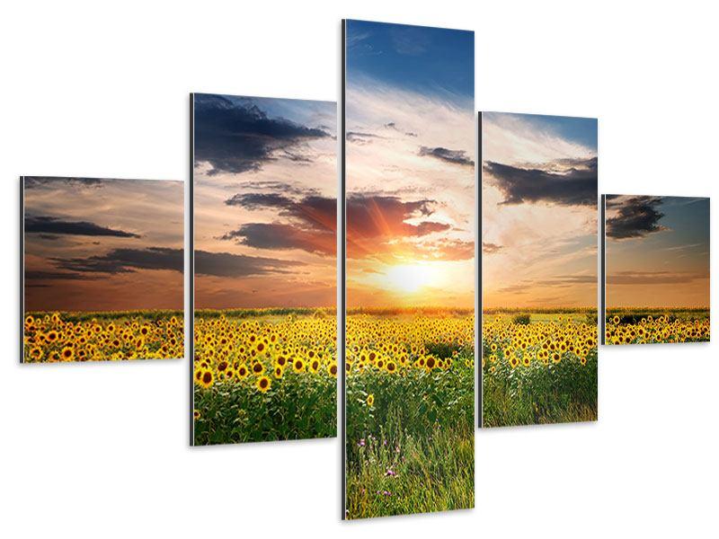 Aluminiumbild 5-teilig Ein Feld von Sonnenblumen